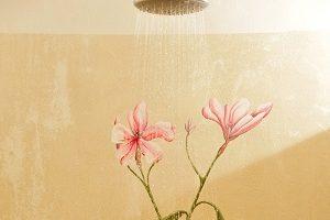 particolare doccia estera
